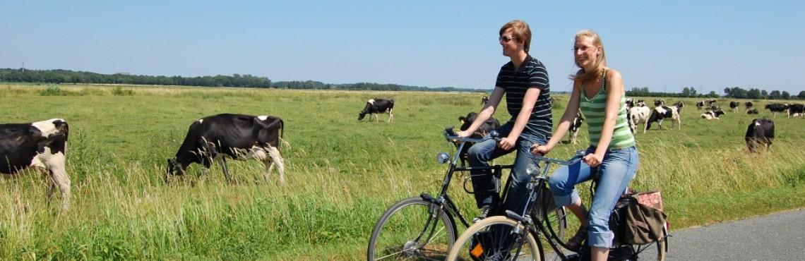 Fahrradwege Ostfriesland Karte.Radfahren